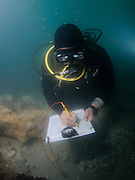 Underwater survey. Scuba diver uses a clip chart and compass