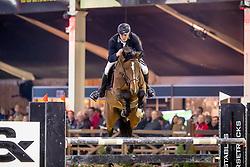 Aegten Wim, BEL, Newton van't Zorgvliet<br /> Hengstencompetitie<br /> Hengstenkeuring BWP - Lier 2019<br /> © Hippo Foto - Dirk Caremans