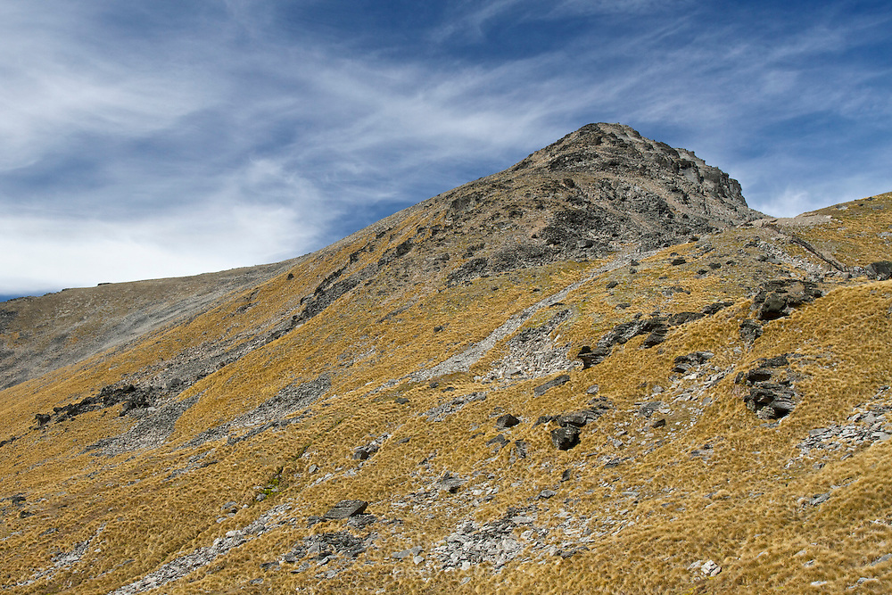 Tussock covers a mountainside in The Remarkables, near Queenstown.