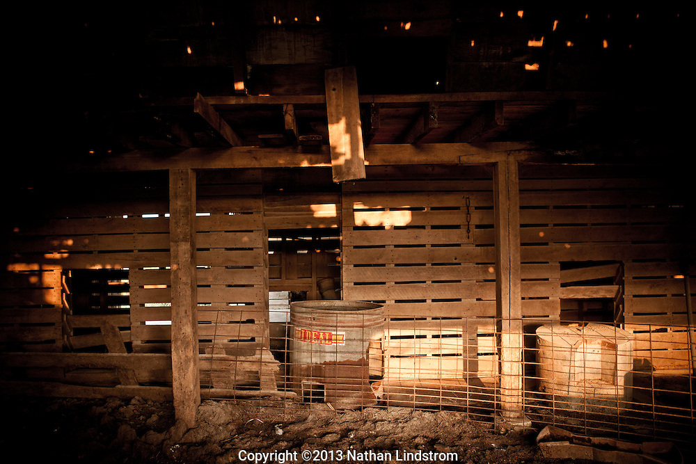 Country life and Agriculture. Insides of a barn<br />