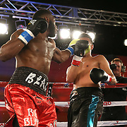 Alphonso Black (L) punches Daniel Rosario during a Telemundo Boxeo boxing match at the A La Carte Pavilion on Friday,  March 13, 2015 in Tampa, Florida. Rosario won the bout by TKO.  (AP Photo/Alex Menendez)