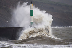© Licensed to London News Pictures. 27/01/2019. Aberystwyth, UK. Gale force north-westerly winds blowing at up to 70mph drive waves into the promenade and sea walls at Aberystwyth in west Wales. A yellow Met Office warning for dangerously strong winds has been issued covering all of Wales and much of the wet of the UK. Photo credit: Keith Morris/LNP