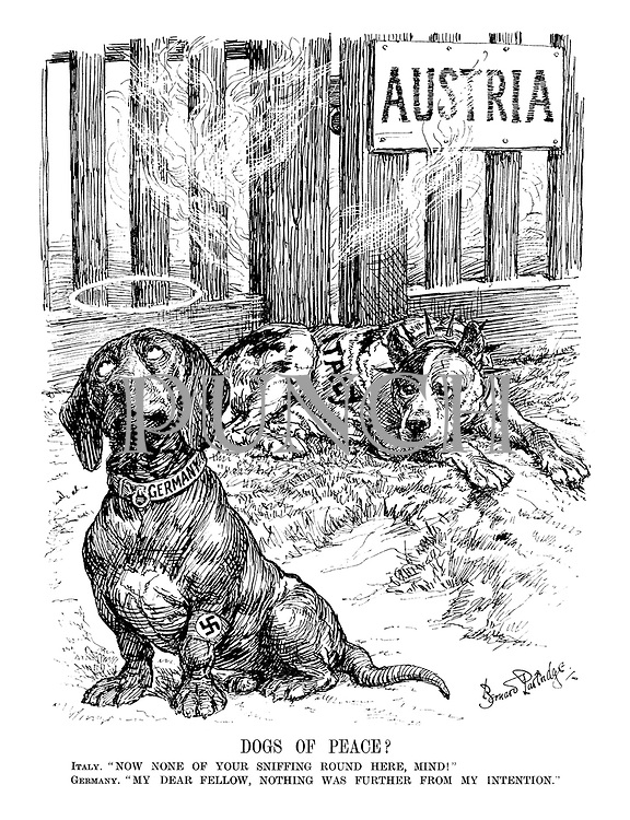 "Dogs of Peace? Italy. ""Now none of your sniffing round here. mind!"" Germany. ""My dear fellow, nothing was further from my intention."""