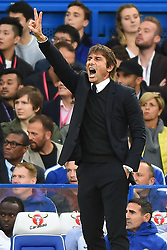 September 30, 2017 - London, England, United Kingdom - Chelsea Manager Antonio Conte during the Premier League match between Chelsea and Manchester City  at Stamford Bridge, London, England on 30 Sept 2016. (Credit Image: © Kieran Galvin/NurPhoto via ZUMA Press)