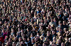 Racegoers watch the action from the stands at Cheltenham Racecourse