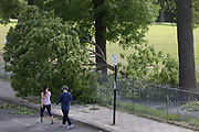 After a period of warm spring weather, and during the UKs governments Coronavirus continuing lockdown restrictions, when a total of 36,393 UK citizens are now reported to have lost their lives, strong gusts of wind brought down a large branch from a 100 year-old ash tree that fell across a well-used path during the lockdown in Ruskin Park, a public green space in the south London borough of Lambeth, on 22 May 2020, in London, England. No-one has been reported as hurt in the incident.
