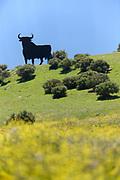 Osborne bull in field in Spain