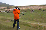Saunders Island, Falkland Islands, Great Britain