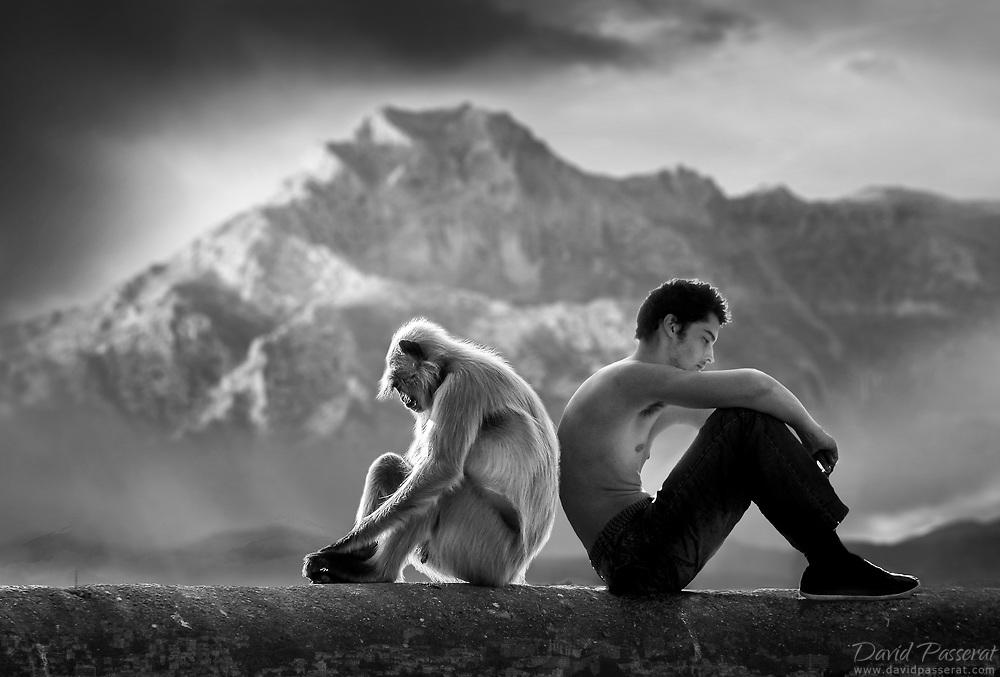 Monkey and man sitting back to back.