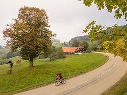 Man riding racing bicycle on cycling tour in the Southern Black Forest, Germany