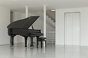 Architecture, wide hall with grand piano, interior