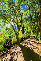 A couple bicycle down a verdant tree lined road, Los Poblanos Historic Inn & Organic Farm, Los Ranchos de Albuquerque, Albuquerque, New Mexico USA