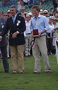 Arnaud Bamberger and Prince Harry, Cartier International Polo. Guards Polo Club. Windsor Great Park. 30 July 2006. ONE TIME USE ONLY - DO NOT ARCHIVE  © Copyright Photograph by Dafydd Jones 66 Stockwell Park Rd. London SW9 0DA Tel 020 7733 0108 www.dafjones.com