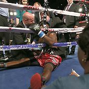 Alphonso Black sits up after being knocked out by Daniel Rosario during a Telemundo Boxeo boxing match at the A La Carte Pavilion on Friday,  March 13, 2015 in Tampa, Florida. Rosario won the bout by TKO.  (AP Photo/Alex Menendez)