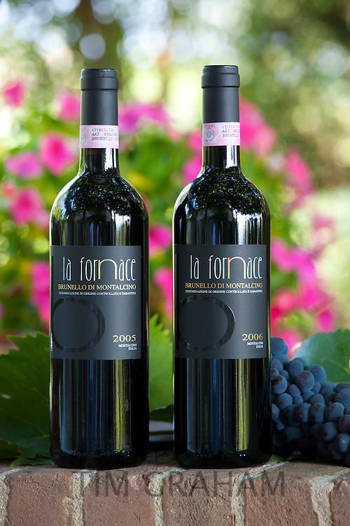 La Fornace Brunello di Montalcino 2005 and 2006 bottles of red wine at wine estate of La Fornace in Val D'Orcia, Tuscany, Italy