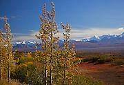 Alaska. Autumn scenic scene near Grassy Pass, Denali Natl. Park.