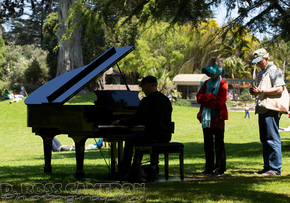 An unidentified man plays one of the pianos set up around the grounds at the fifth annual Flower Piano exhibition at the San Francisco Botanical Garden in Golden Gate Park, Friday, July 19, 2019 in San Francisco. The exhibition continues through Monday. (Photo by D. Ross Cameron)