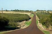 A long road on Molokai heads west.