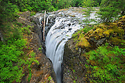 Englishman River Falls<br /> Englishman River Falls Provincial Park<br /> British Columbia<br /> Canada