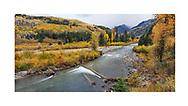 Autumn foliage in the Gunnison Range of Colorado along the Crystal River, Colorado, USA