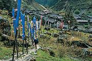 Trekker climbs prayer flag lined path, Olungchunggola, Eastern Nepal.
