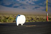 Damjan Zubovnik tijdens de derde racedag. In Battle Mountain (Nevada) wordt ieder jaar de World Human Powered Speed Challenge gehouden. Tijdens deze wedstrijd wordt geprobeerd zo hard mogelijk te fietsen op pure menskracht. Ze halen snelheden tot 133 km/h. De deelnemers bestaan zowel uit teams van universiteiten als uit hobbyisten. Met de gestroomlijnde fietsen willen ze laten zien wat mogelijk is met menskracht. De speciale ligfietsen kunnen gezien worden als de Formule 1 van het fietsen. De kennis die wordt opgedaan wordt ook gebruikt om duurzaam vervoer verder te ontwikkelen.<br /> <br /> Damjan Zubovnik at the third racing day. In Battle Mountain (Nevada) each year the World Human Powered Speed Challenge is held. During this race they try to ride on pure manpower as hard as possible. Speeds up to 133 km/h are reached. The participants consist of both teams from universities and from hobbyists. With the sleek bikes they want to show what is possible with human power. The special recumbent bicycles can be seen as the Formula 1 of the bicycle. The knowledge gained is also used to develop sustainable transport.