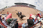 Rodeo Event Marketing Photography