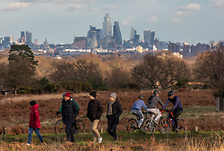 © Licensed to London News Pictures. 02/01/2021. London, UK. With a back drop of central London, families, walkers and cyclists enjoy a stroll in the sunshine in tier 4 restrictions on the first Saturday of 2021 in Richmond Park, South West London as weather forecasters predict a milder week ahead with rain. Last Wednesday the Oxford vaccine was approved for use, with the government securing over 100 million doses with an expected full rollout of vaccinations from this Monday, January 4th 2021 as the coronavirus pandemic crisis continues into the new year. UK. Photo credit: Alex Lentati/LNP