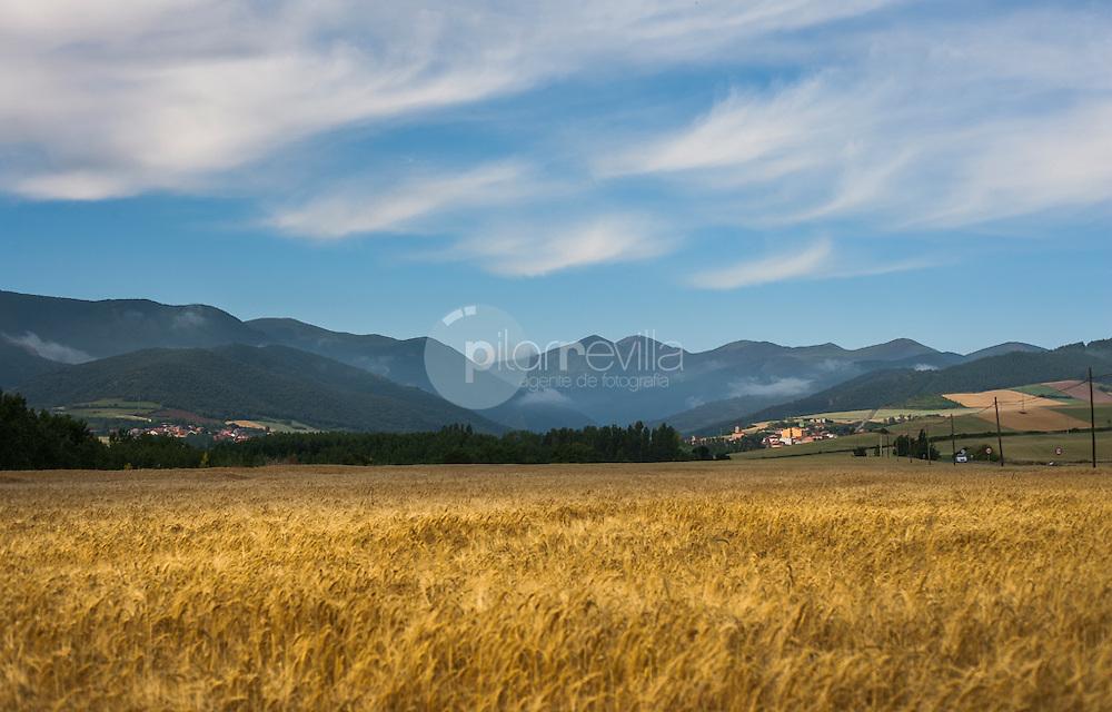 Campos de cereal en Valle de Cardenas. La Rioja ©Daniel Acevedo / PILAR REVILLA