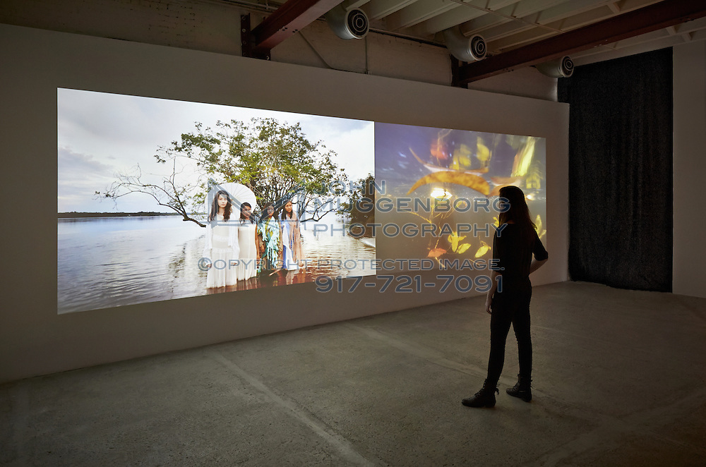 """An image of the installation """"The Ghost in Between"""" by Janaina Tschape at Tierney Gardarin gallery in Chelsea."""