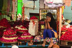 September 2, 2017 - Ajmer, Rajastahn, India - Muslims perform rituals during the Eid al-Adha (Credit Image: © Shaukat Ahmed/Pacific Press via ZUMA Wire)