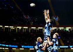 Rory Thornton of Cardiff Blues goes for the lineout<br /> <br /> Photographer Simon King/Replay Images<br /> <br /> Guinness PRO14 Round 21 - Cardiff Blues v Ospreys - Saturday 27th April 2019 - Principality Stadium - Cardiff<br /> <br /> World Copyright © Replay Images . All rights reserved. info@replayimages.co.uk - http://replayimages.co.uk