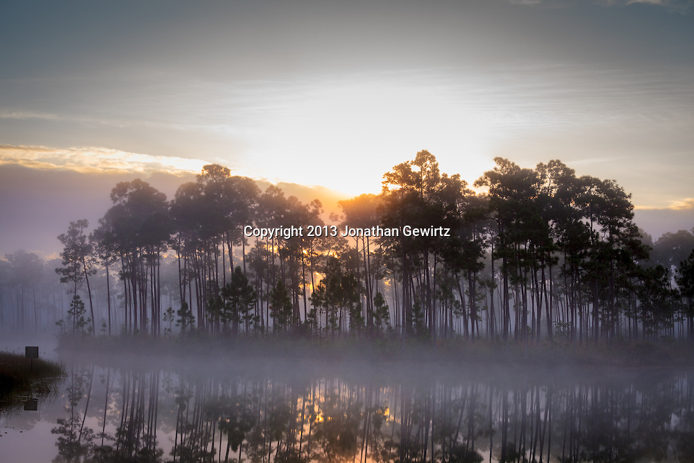 The sun rises behind a fog-enshrouded island at Long Pine Key pond in Everglades National Park, Florida. <br /> <br /> WATERMARKS WILL NOT APPEAR ON PRINTS OR LICENSED IMAGES.<br /> <br /> Licensing (similar image): https://tandemstock.com/assets/67819211