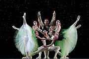 GASTON DE CARDENAS/EL NUEVO HERALD -- MIAMI -- Haiyan Wu, Jeremy Cox, Jeanette Delgado, Didier Bramaz, Patricia Delgado, Mary Carmen Catoya and Carlos Guerra dancers from the Miami City Ballet during a rehearsal of Emeralds part of the Ballet Jewels.