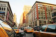 New York, New York. United States. .November 6th 2004.
