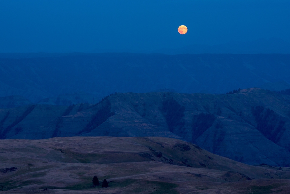 Full moon rising over Idaho's Seven Devils Mountains with Oregon's Zumwalt Prairie in the foreground.