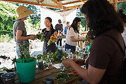 Content Magazine hosts its Flower & Garden Content Lab at Veggielution on Emma Prusch Farm Park in San Jose, California, on May 14, 2016. (Stan Olszewski/SOSKIphoto)
