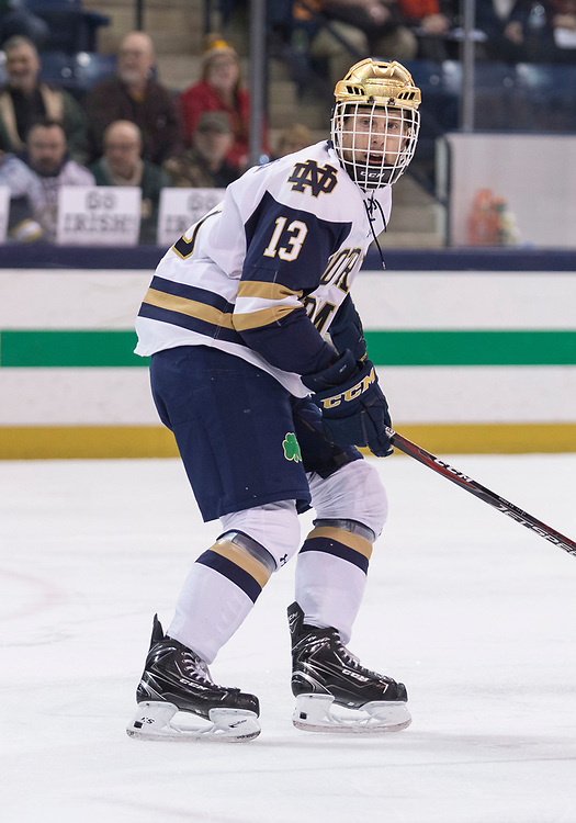 January 11, 2019:  \Notre Dame forward Colin Theisen (13) during NCAA Hockey game action between the Minnesota Golden Gophers and the Notre Dame Fighting Irish at Compton Family Ice Arena in South Bend, Indiana.  Minnesota defeated Notre Dame 5-1.  John Mersits/CSM