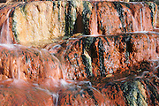 Macro view of water and algae on hot rocks