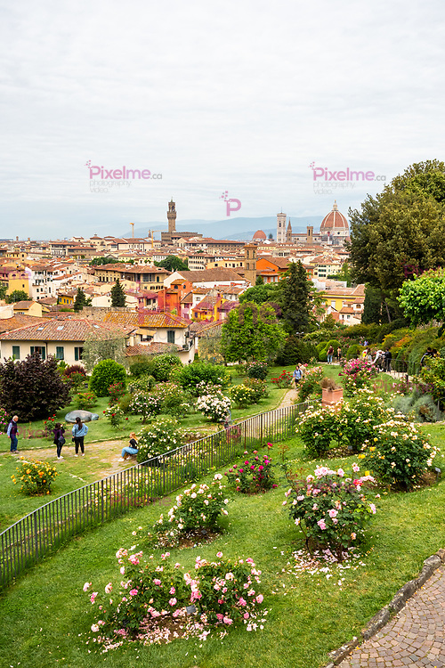View of the city of Florence from the Giardino delle Rose -Rose Garden- public park in Florence, Tuscany region - Italy Vertical Format
