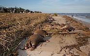 Waveland Mississippi After Hurricane