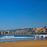 USA, California, La Jolla. La Jolla Shores Beach and Scripps Pier.