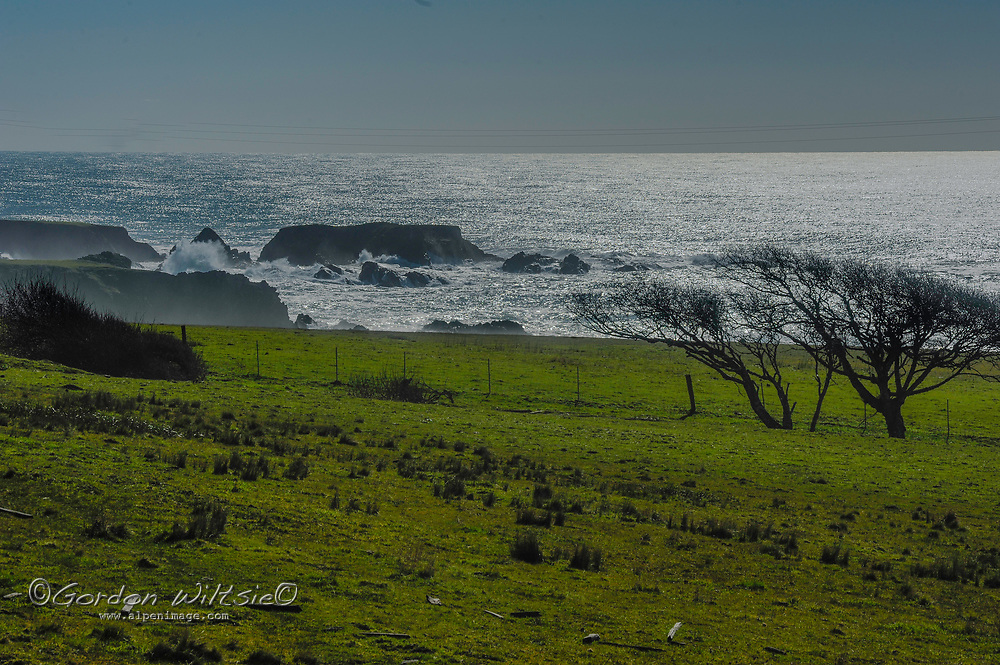 Pacific Ocean waves roll ashore at Black Point on the California coast in Sonoma County.