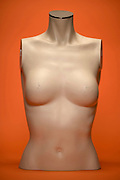 frontal view of a female mannequin torso of which the nipple on the breast are sanded down