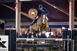 Beyers Guy, BEL, Mithras de Regor<br /> Hengstencompetitie<br /> Hengstenkeuring BWP - Lier 2019<br /> © Hippo Foto - Dirk Caremans