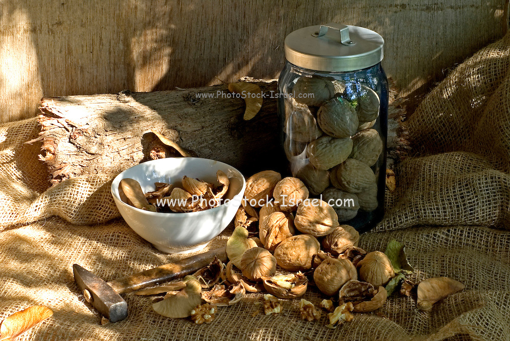 Hammer and walnuts on jute