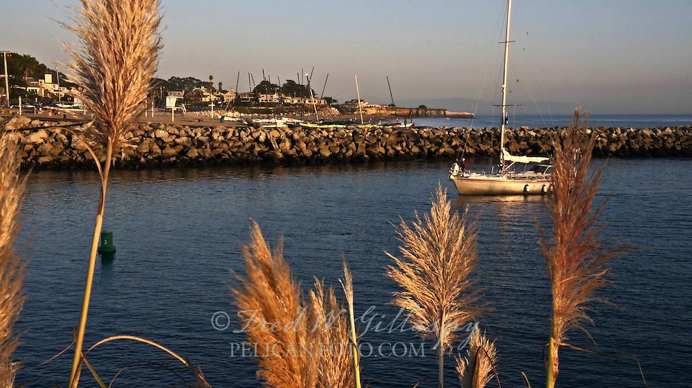 Santa Cruz Harbor 3599