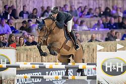 Wathelet Gregory, BEL, Qualido 3<br /> Jumping Mechelen 2018<br /> © Hippo Foto - Sharon Vandeput<br /> 27/12/18
