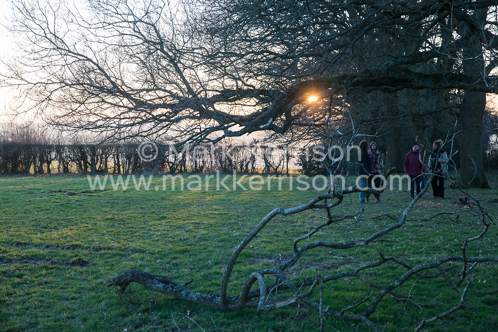 Great Missenden, UK. 28th February, 2021. A row of oak trees along Leather Lane is pictured shortly before sunset. Environmental activists from HS2 Rebellion have recently occupied the trees and set up a camp nearby following local reports that around twelve of the oak trees, marked with yellow paint spots, are threatened with felling for temporary works associated with the HS2 high-speed rail link.