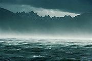 Windstorm, Beagle Channel, Isla Grande behind, Tierra del Fuego, Chile.
